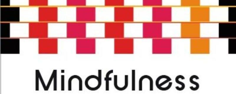 Anouk's Boekhoek: Mindfulness van Ger Schurink